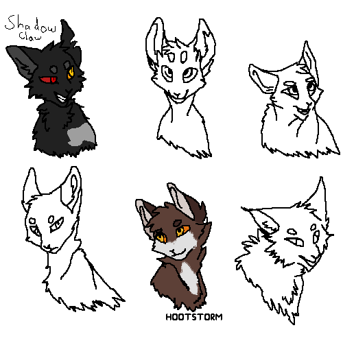 shadow claw as a warrior #warrior cats