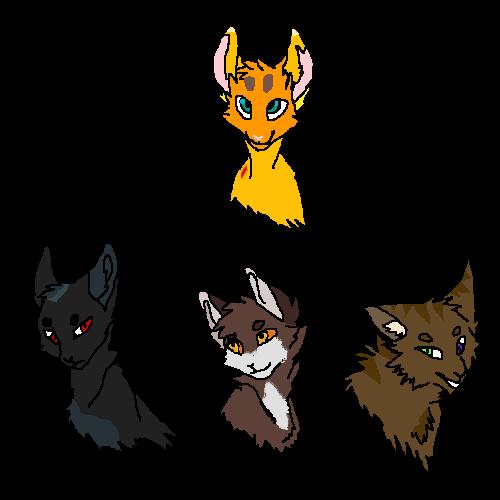 Amywolf cat