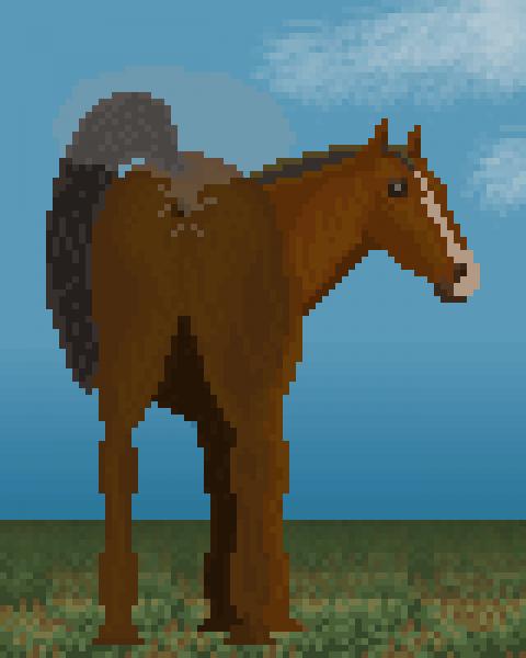 Windy Horse