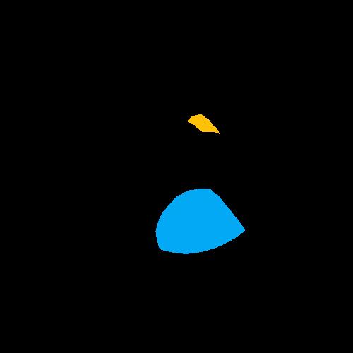 Bird Drawing Entry