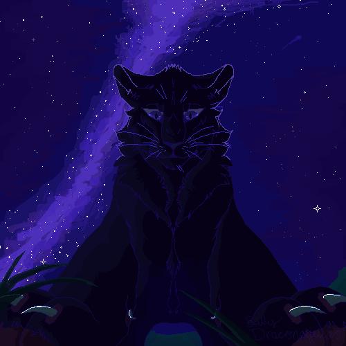 The Night Stars Guide my Way