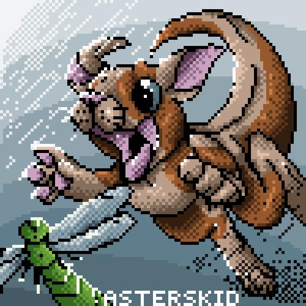 Kangaroo! (AstersKid)