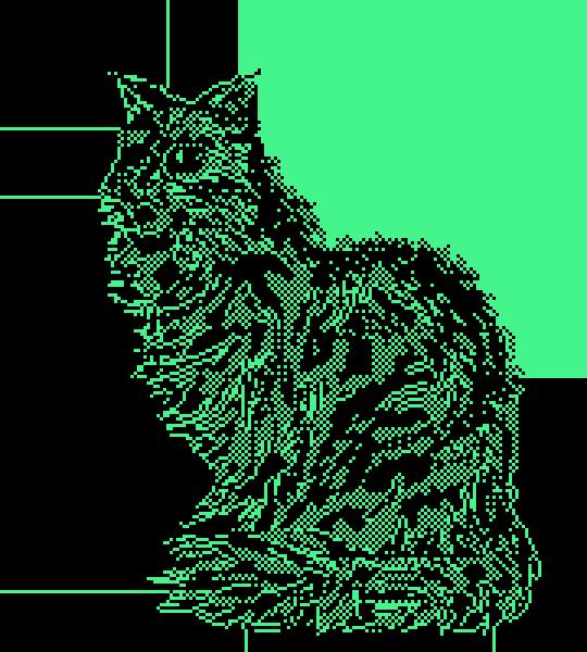 lil ball of fur